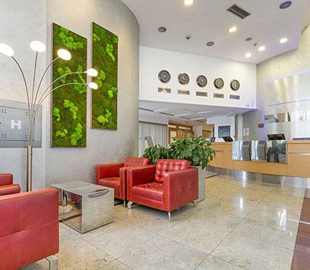 Moss Wall - Interior Plant Designs