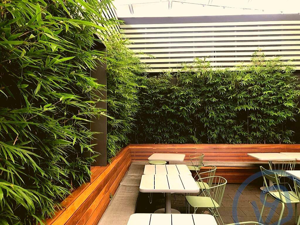 indoor plant hire sydney