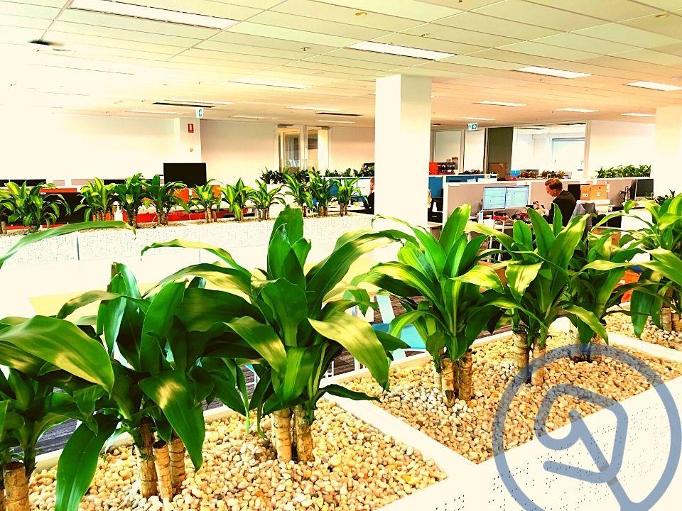 Indoor Plant Hire Tambour Planter Box