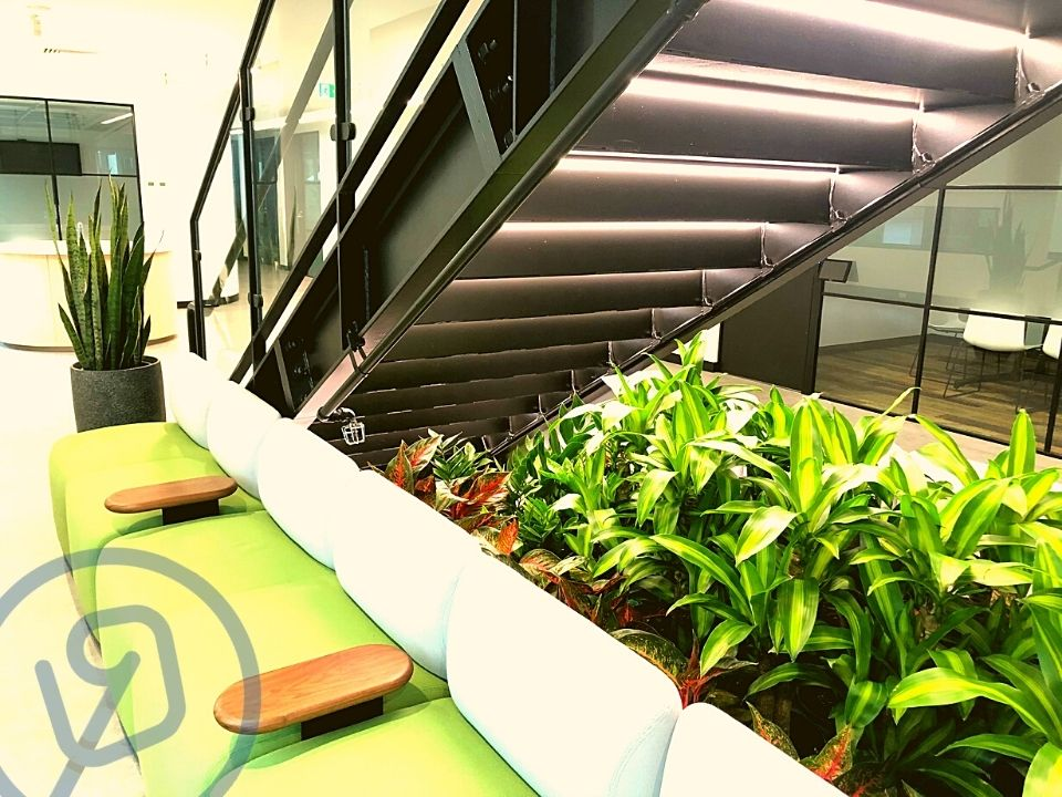 Indoor Plant Hire Troughs