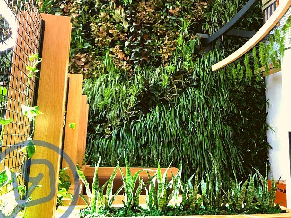 Indoor Plant Hire Greenwall Vertical Garden