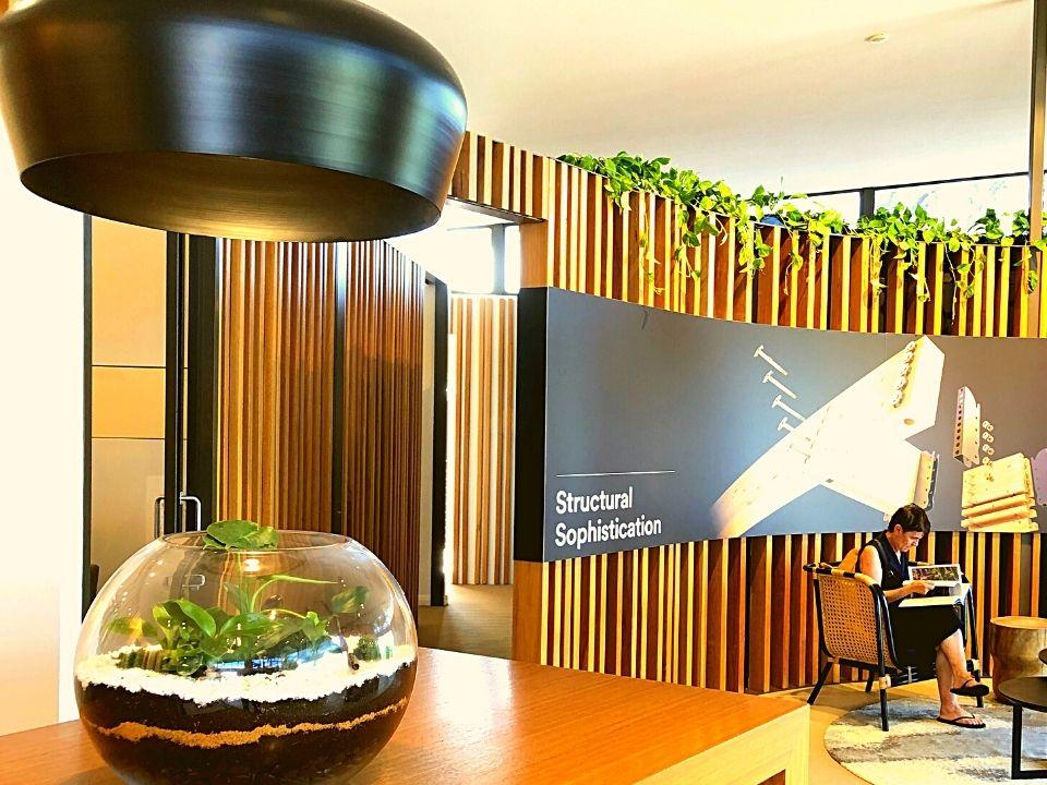 Indoor Plant Hire Terrarium
