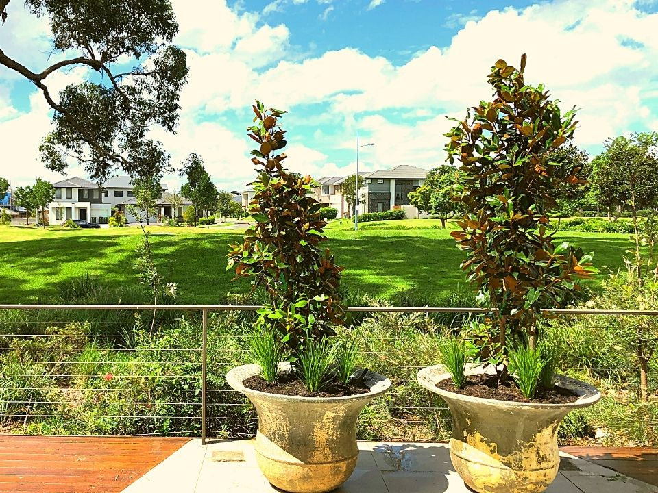 Indoor Plant Hire Outdoor Balcony Garden