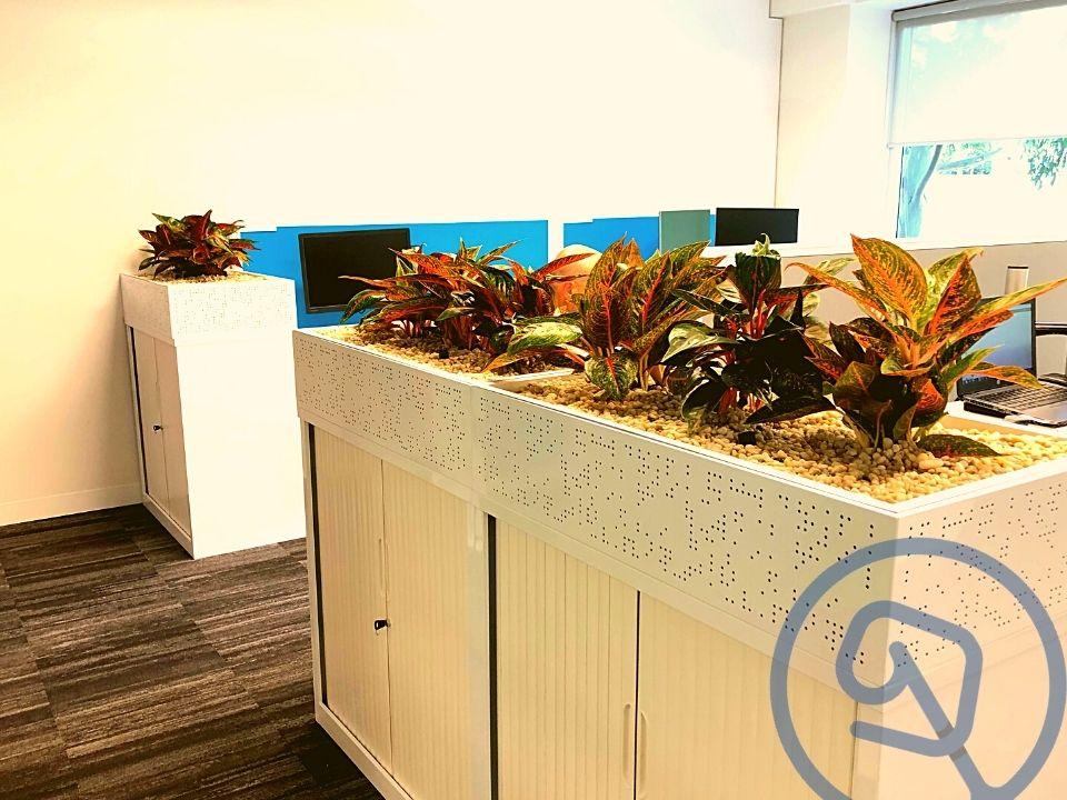 Office Plant Hire Tambour Planter Box